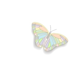 Butterfly with open wings vector image
