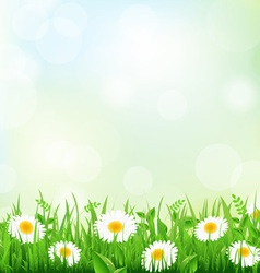 Floral field vector