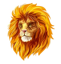 Head of a lion eps10 vector