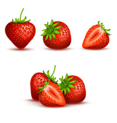 Realistic sweet and fresh strawberry vector