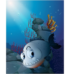A scary piranha near the rocks vector