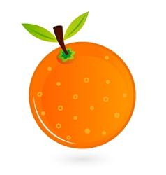 Orange fruit isolated on white vector image