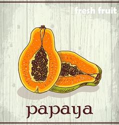 Hand drawing of papaya Fresh fruit sketch vector image vector image