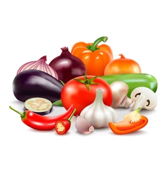 Vegetables composition on white background vector