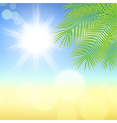 Sunny background with palm leaves vector