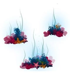 Decorative aorals and vector
