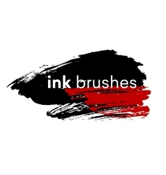 Detail ink brush paint stroke vector image vector image