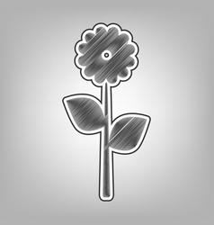 flower sign pencil sketch vector image