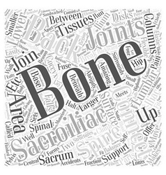 Sacroiliac bones and back pain word cloud concept vector