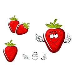 Sweet strawberry fruit with leafy cap vector