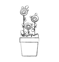 Blurred silhouette drawing roses planted with vector