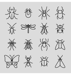 Insect thin line icons set vector image