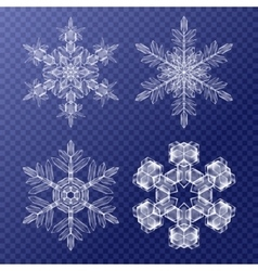 Decorative snowflakes set background pattern for vector