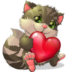 beautiful kitten vector image vector image
