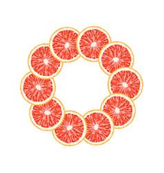 Round frame of grapefruit slice citrus frame vector