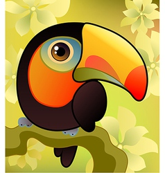 toucan on the branch vector image