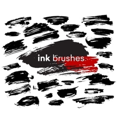 Detail ink brush paint stroke vector