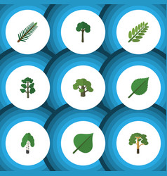 Flat icon nature set of linden timber wood and vector