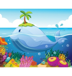 Fish island and coral in the sea vector
