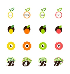 Lemon orange lime tangerine grapefruit vector