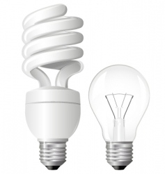 two light bulbs vector image