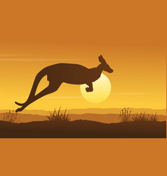 Landscape of kangaroo on hill silhouettes vector