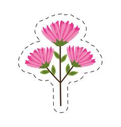 pink flower branch cut line vector image