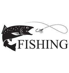 fishing salmon vector image