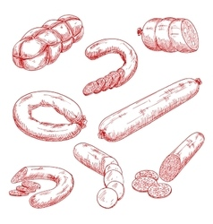 Assortment of fresh meat sausages red sketch icons vector