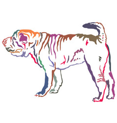 Colorful decorative standing portrait of shar pei vector