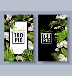 tropic orchid banners vector image vector image