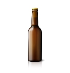 Blank brown realistic beer bottle isolated on vector