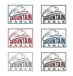 Mountain eagle vintage labels set vector