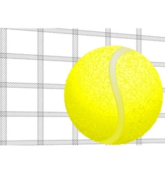 tennis ball and net vector image