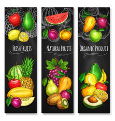 Tropical and garden fruit chalkboard banner set vector