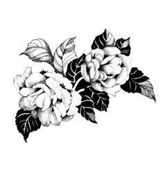 Floral spring roses flowers monochrome vector