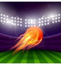 Stadium Of Cricket Night vector image