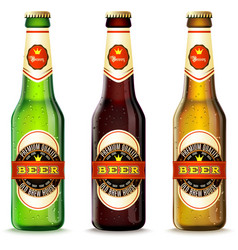 Beer bottles set vector