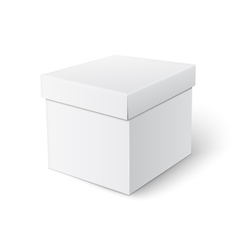 Cubic box template vector