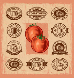 Vintage tomato stamps set vector