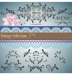 calligraphic vintage design vector image
