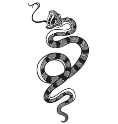 Snake tattoo black white vector