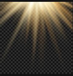 sun light lens yellow flare template vector image