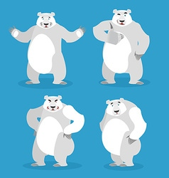 Polar bear set of different poses expression of vector