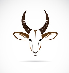 Image of an deer head impala vector