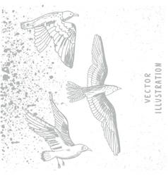 grunge birds white vector image