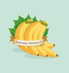 Banana natural product label vector