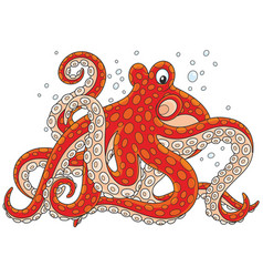 red spotted octopus vector image