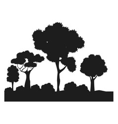 Silhouette trees bushes forest ecology design vector