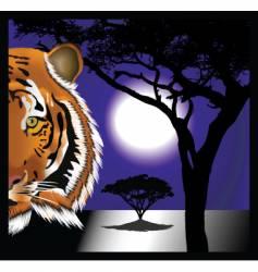 tiger night vector image vector image